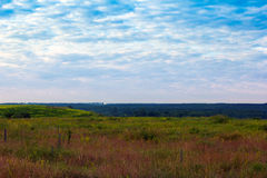 Grassy valley, trees and a cloudy blue sky Royalty Free Stock Photography