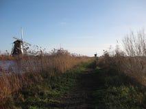 A grassy walking path running along the Kinderdijk near Rotterdam, The Netherlands royalty free stock photo