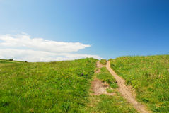 Grassy walkway Royalty Free Stock Photos