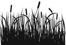 Grasvektorschattenbild Stockfoto