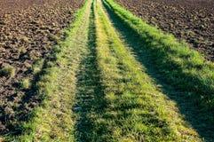 Grasweg-Abflussrinnenfeld Stockbild