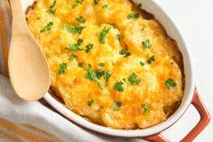 Gratén de la patata con queso Fotografía de archivo