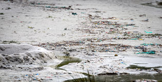 Grat i klingeryt marnotrawimy na piaskowatej plaży Atlantyk oceanie Obrazy Royalty Free