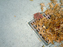 Grate and leaves 2. Drain grate with leaves stock photo