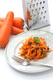Grated carrot salad and grater Royalty Free Stock Images