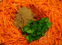 Grated carrot salad. With spices and cilantro royalty free stock photos