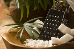 Grated coconut with grater and nut Royalty Free Stock Photo