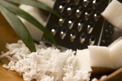 Grated coconut with grater and nut Royalty Free Stock Photography