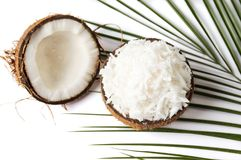 Grated coconut in a natural shell. As bowl stock photo