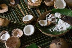 grated kokosnöt Arkivfoton