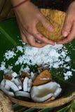 grated kokosnöt Arkivbilder