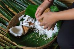 grated kokosnöt Royaltyfri Bild