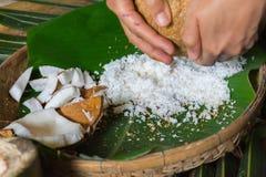 grated kokosnöt Royaltyfri Fotografi