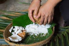 grated kokosnöt Arkivbild