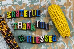 Grateful thankful blessed happy tradition. Character thank you give giving back thanks Thanksgiving grateful thankful blessed prayer food corn cob religious stock image