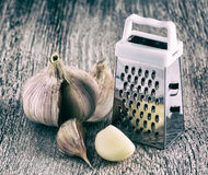 Grater garlic Royalty Free Stock Photography