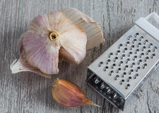 Grater garlic. top view Stock Photography