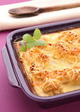 Gratin. Gourmet gratin of vegetables and basil stock photo