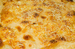Gratin closeup Royalty Free Stock Photos