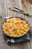 Gratin della patata in casseruola con crema e formaggio Immagini Stock