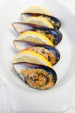 Gratin mussels Royalty Free Stock Photo