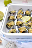 Gratin of Mussels, selective focus. Italian cuisine. Royalty Free Stock Photography