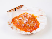 Gratin scallop on white background. Stock Photos