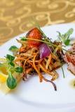 Gratin warzywo z tuńczyk ryba Fotografia Stock