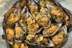 Gratinated Mussels naczynie obrazy stock