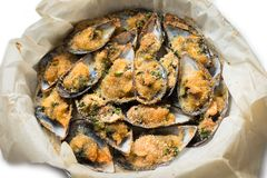 Gratinated Mussels naczynie fotografia royalty free