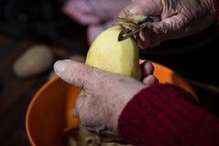 Grating potatoes Stock Photography