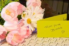 Gratitude das saliências Foto de Stock Royalty Free
