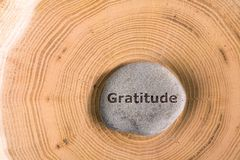 Gratitude in stone on tree. Gratitude in stone on section of the trunk with annual rings stock photo
