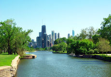 Grattacieli del Chicago dalla sosta di Lincoln Immagine Stock Libera da Diritti