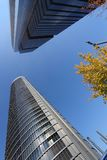 Grattacieli di Madrid Immagine Stock