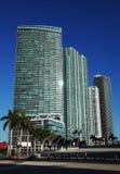 Grattacieli di Miami Immagine Stock Libera da Diritti