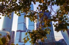 Grattacieli di Mosca al tramonto in autunno Fotografia Stock