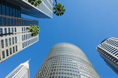 Grattacieli di Sydney fotografia stock libera da diritti