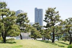 Grattacieli e giardino giapponese immagini stock libere da diritti