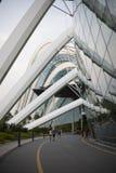 Grattacieli moderni comuni di affari di Singapore fotografia stock