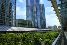 Grattacieli moderni vicino ad un parco fotografia stock