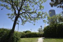 Grattacielo di Cesenatico royalty free stock photo