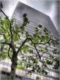 Grattacielo nella città urbana Immagine Stock