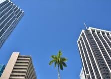 Gratte-ciel du centre de Miami Images stock