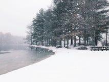 Gratteich-Nationalpark-Winteransicht stockbilder