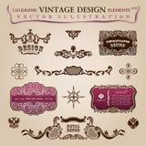 Gratulacyjni roczników kaligraficzni elementy Obraz Royalty Free