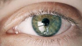 Grau, grün mit dem gelben menschlichen Auge des Jungen Kamera, Abschluss oben betrachtend stock video
