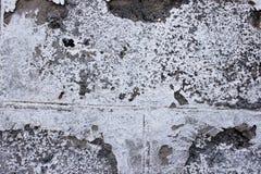 Graue alte Steinmauer Stockbilder