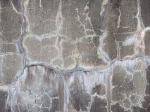 Graue Betonmauer Stockfotos