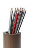 Graue Bleistifte und ein roter Bleistift Stockbild